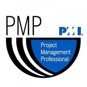 Resume project manager wms